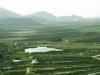 Pole před příjezdem do Bosny a Hercegoviny