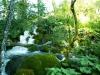 Lesní potok v přírodním parku Plitvická jezera