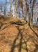 Stíny stromů - hrad Stagnov